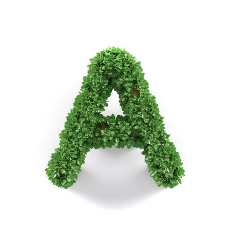grass isolated: Green leaves A ecology letter alphabet font isolated on white background. 3d rendering