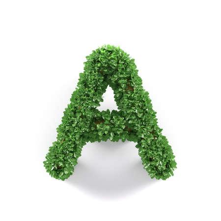 Hojas Verdes De La Ecología Letra E Alfabeto Fuente Aislado En El ...
