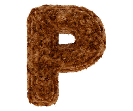 pelage: Wild animal brown bushy bear decorative fur alphabet capital letter P. 3d rendering illustration. Isolated on white background