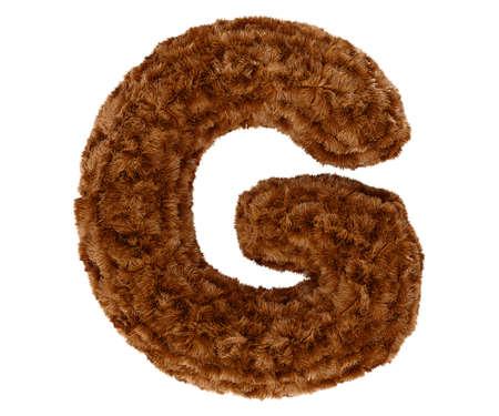 hairy: Wild animal brown bushy bear decorative fur alphabet capital letter G. 3d rendering illustration. Isolated on white background