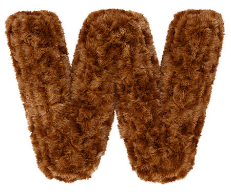 bushy: Wild animal brown bushy bear decorative fur alphabet capital letter W. 3d rendering illustration. Isolated on white background Stock Photo
