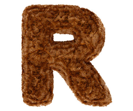 shaggy: Wild animal brown bushy bear decorative fur alphabet capital letter R. 3d rendering illustration. Isolated on white background