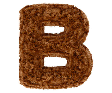 pelage: Wild animal brown bushy bear decorative fur alphabet capital letter B. 3d rendering illustration. Isolated on white background