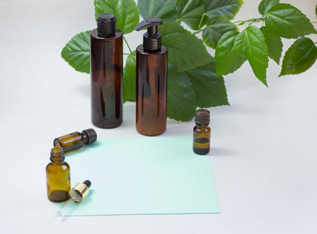 Dark cosmetic bottles and green natural leaves on a light background. Green empty card, sheet for writing. Layoutfor adding inscriptions. The concept of natural environmentally friendly cosmetics Stok Fotoğraf - 122096609