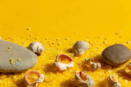 Seashells and stones on a bright yellow sandy background. Summer background with bright sunlight. Travel and vacation concept.