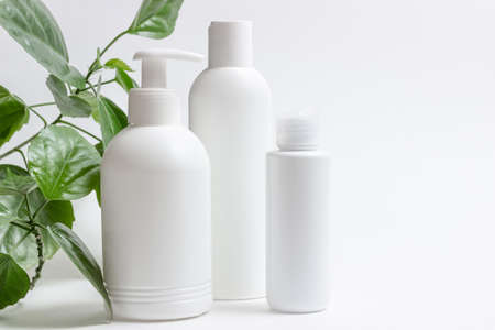 Glass cosmetic bottles with a dropper stand next to green leaves on a white background. Organic cosmetics concept, natural essential oil and cream Standard-Bild