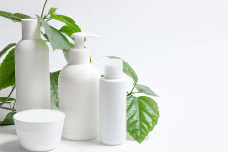 Set of cosmetic cans of organic cosmetics for face and body care on a white background with green leaves. Cream, shampoo and lotion on a light background. Layout, copy space Standard-Bild