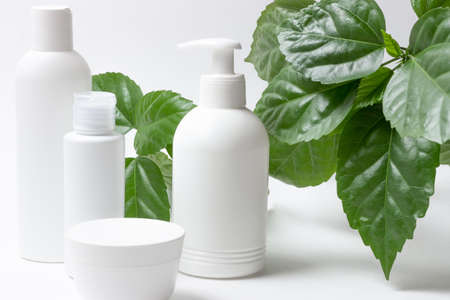 Set of cosmetic cans of organic cosmetics for face and body care on a white background with green leaves. Cream, shampoo and lotion on a light background. Layout, copy space.