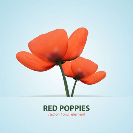 Vector illustration: Two isolated poppy. Red flowers Ilustração