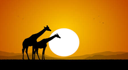 Two Giraffe against the setting sun and hills. Silhouette Illustration