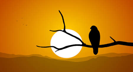 Silhouette of Buzzard sitting on a dry branch against the setting sun. Illustration