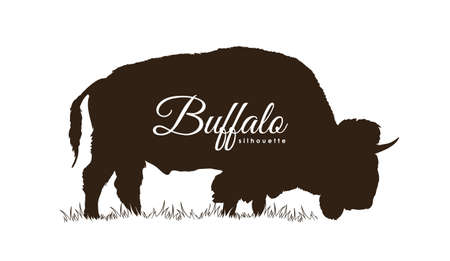 Vector illustration: Hand drawn Buffalo Silhouette Isolated on white background