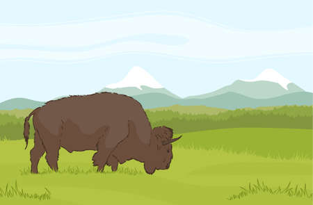 Vector illustration: One buffalo on natural mountains background. Landscape