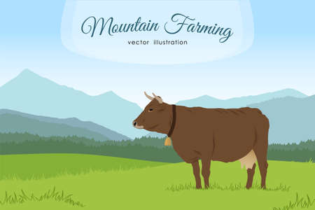 Vector illustration: Cow and rural meadow on the mountain background. Natural landscape.