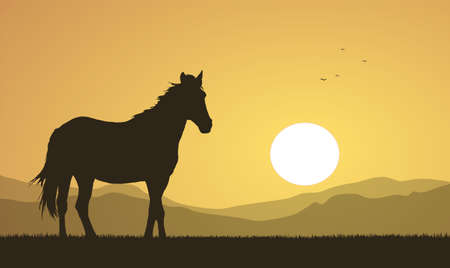 Vector illustration: Landscape with sunset and horse silhouette.