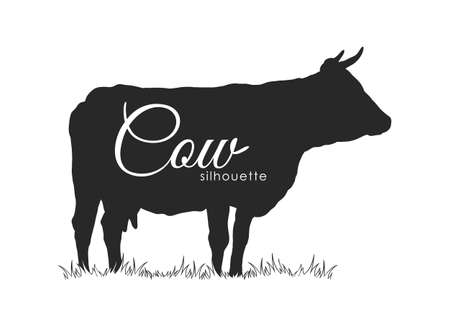 Hand drawn cow silhouette vector illustration isolated on white background. 일러스트