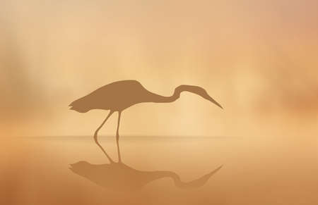 Vector Heron in the mist in the morning lake