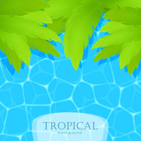 Summer tropical background with water and palm leaves. Illustration