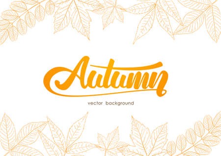 Handwritten orange lettering of Autumn with hand-drawn leaves on white background. Sketch line design.