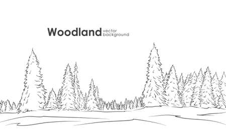 Hand drawn Woodland landscape Stock Illustratie