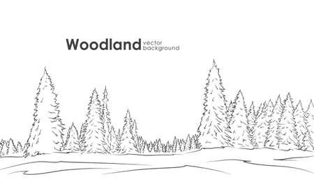 Hand drawn Woodland landscape Vettoriali