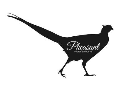 Vector illustration: silhouette of pheasant isolated on white background Stock Illustratie