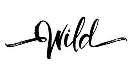 ベクトルイラスト:白い背景にワイルドの手書きブラシレタリング
