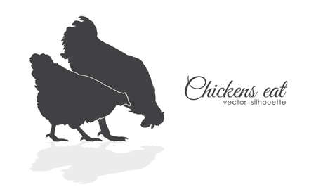 Isolated silhouette of Chickens peck feed on white background. Çizim