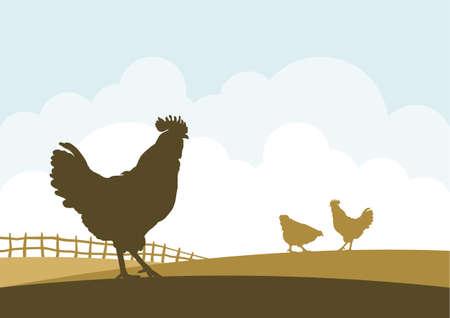 Illustration vectorielle: Scène de la bande dessinée avec des silhouettes de poulets sur fond de champ de ferme.