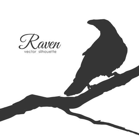 Vector illustration: Silhouette of Raven sitting on a dry branch isolated on white background.