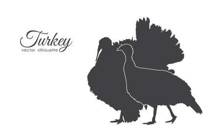 Vector illustration: Silhouette of couple turkeys isolated on white background. Stock Illustration - 94769424