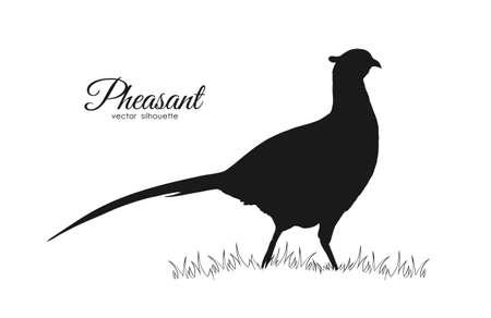 Illustration vectorielle: silhouette noire de faisan sur fond blanc