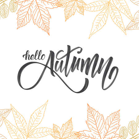 Handwritten brush lettering of Hello Autumn on hand drawn leaves background. Outline sketch design