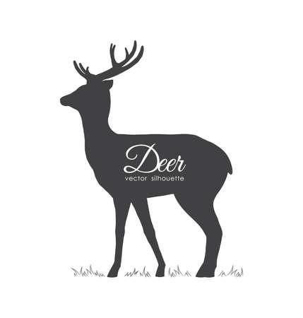 Vector illustration: Black silhouette of Deer isolated on white background. Illustration