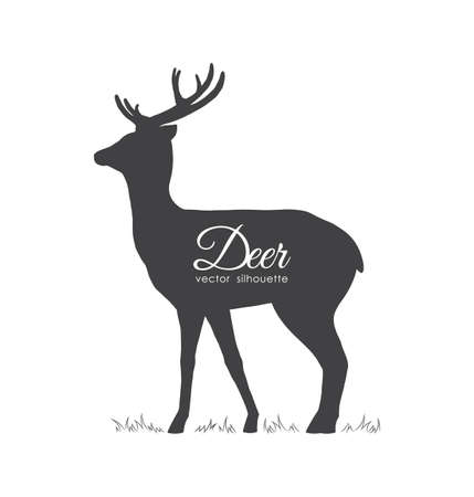 Vector illustration: Black silhouette of Deer isolated on white background. Stock Vector - 108471194