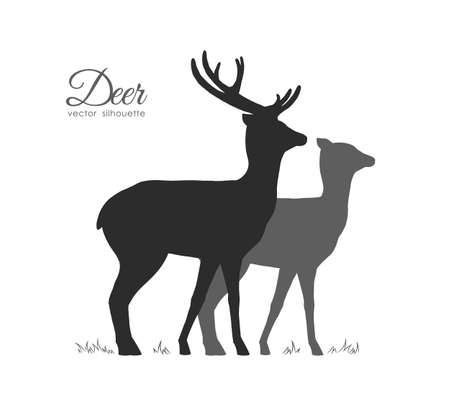 Vector illustration: Silhouette of two Deer isolated on white background. Illustration