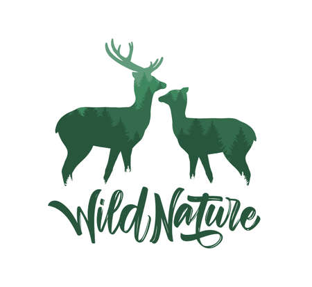 Vector illustration: Two Deer with pine forest and hand lettering of Wild Nature. Double exposition.