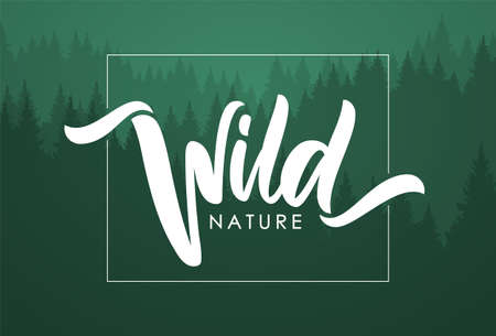 Handwritten calligraphic brush lettering composition of Wild Nature on green forest background. Çizim