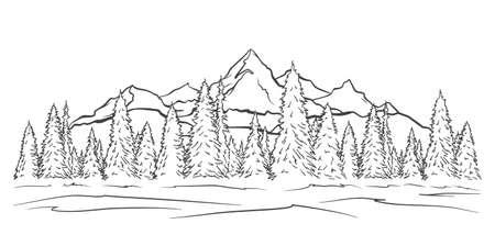 벡터 그림: 손으로 그린 산은 봉우리와 소나무 숲이 있는 풍경을 스케치합니다. 라인 디자인