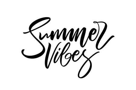 Handwritten calligraphic type lettering composition of Summer Vibes on white background Фото со стока - 127492384