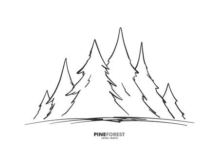 Vector illustration: Hand drawn sketch pine forest. Christmas banner or poster template. Illustration
