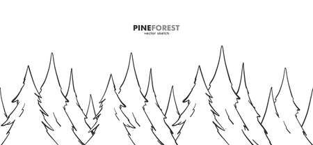 Vector Hand drawn sketch seamless pine forest Illusztráció