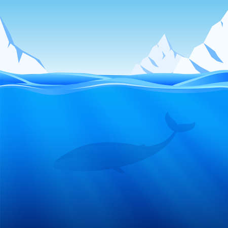 Vector illustration: Water Background with northern sea, icebergs and whale.