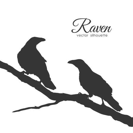 Vector illustration: Silhouette of ravens Couple on dry branch.