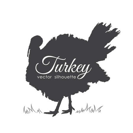 Vector illustration: Silhouette of turkey isolated on white background. Иллюстрация