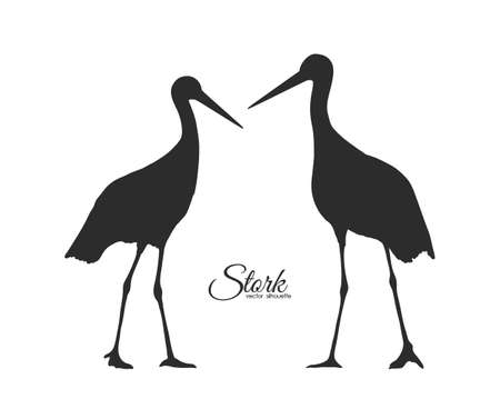 Vector Silhouette of couple Storks isolated on white background.
