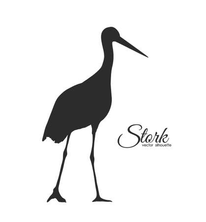 Vector Black Silhouette of Stork isolated on white background.