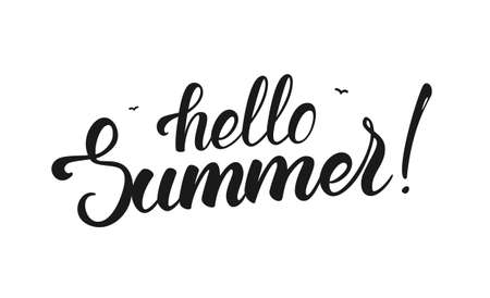 Vector illustration: Brush lettering of Hello Summer with birds isolated on white background. Illustration
