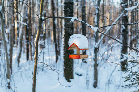 Close-up photo of empty wooden birdhouse