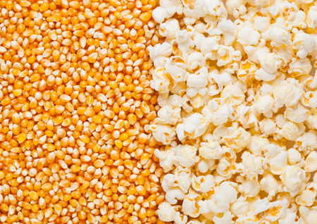 Raw golden sweet corn and popcorn seeds half plate macro Stock Photo